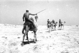 'Camel Force' of FlakReg.33 at El Alamain